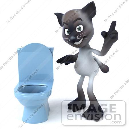 Cats Potty Training Toilet
