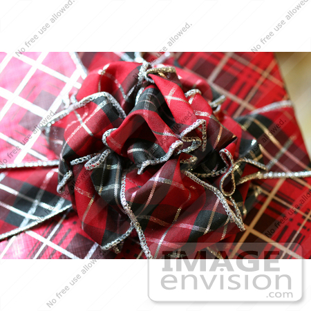 #500 Photograph of a Plaid Colored Christmas Present by Jamie Voetsch