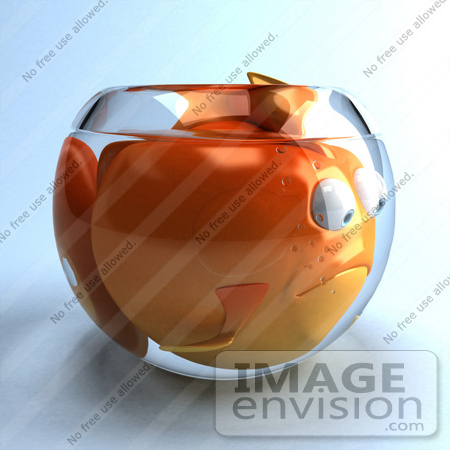 List of synonyms and antonyms of the word goldfish characters for Fish antibiotics petco