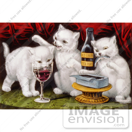 #5290 White Cats Drinking Wine by JVPD