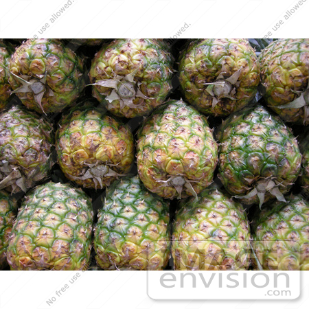 #53882 Royalty-Free Stock Photo of a Pineapples by Maria Bell