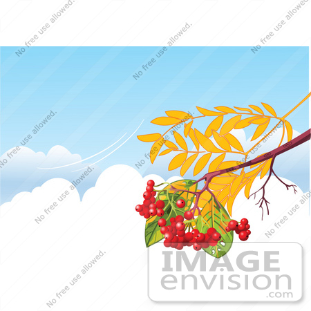 #56323 Royalty-Free (RF) Clip Art Illustration Of An Autumn Branch With Berries, Over Clouds In A Blue Sky With A Breeze by pushkin