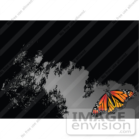 #56324 Royalty-Free (RF) Clip Art Illustration Of A Monarch Butterfly On A Reflective Gray And Black Surface by pushkin