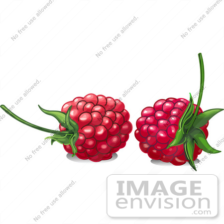 Royalty-Free Cartoons & Stock Clipart of Berries | Page 1