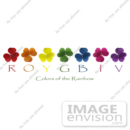 #589 Picture of the Colors of the Rainbow Shown With Clovers by Jamie Voetsch