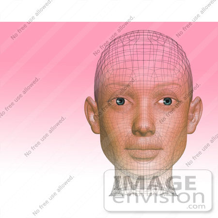 #60910 Royalty-Free (RF) Illustration Of A Futuristic Wire Frame Female Head Diagram Looking Forward - Version 2 by Julos