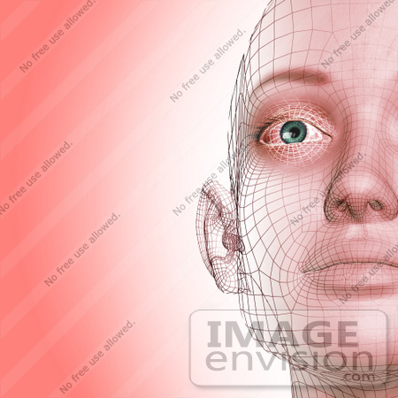 #60911 Royalty-Free (RF) Illustration Of A Half Of A Futuristic Wire Frame Female Head Diagram Facing Front - Version 2 by Julos