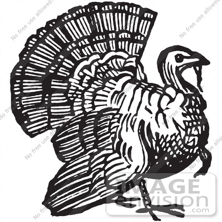 61367 Retro Clipart Of A Vintage Thanksgiving Turkey Bird Gobbler In Black And White