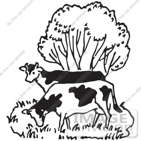 Cows Grazing Clip Art Cliparts