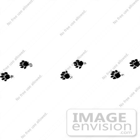 #61649 Clipart Of Marten Tracks In Black And White - Royalty Free Vector Illustration by JVPD