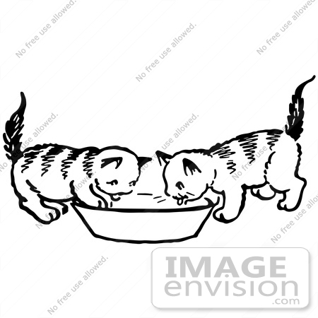 #61907 Clipart Of Two Kittens Drinking From A Saucer In Black And White - Royalty Free Vector Illustration by JVPD