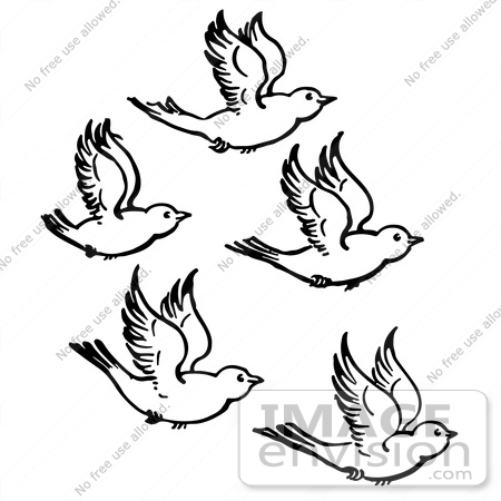 #61916 Clipart Of Five Flying Birds In Black And White - Royalty Free Vector Illustration by JVPD