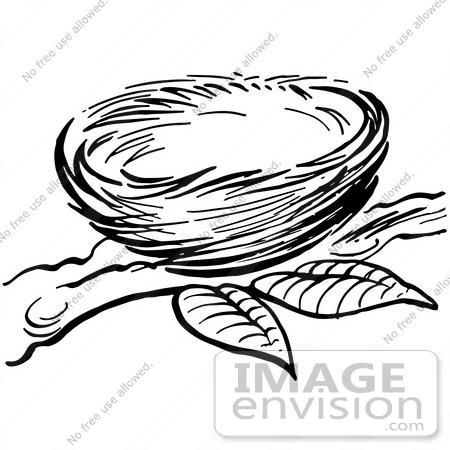 #61917 Clipart Of A Bird Nest On A Branch In Black And White - Royalty Free Vector Illustration by JVPD