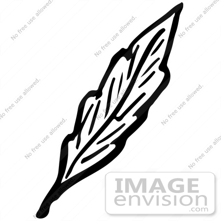 #61926 Clipart Of A Leaf In Black And White - Royalty Free Vector Illustration by JVPD