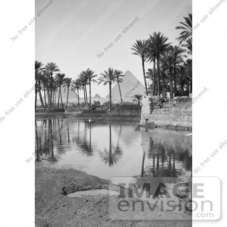 #6496 Native Village, Palm Trees and Egyptian Pyramids by JVPD