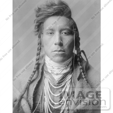 Stock Photography: Crow Native American Man, Bird on High Land by JVPD