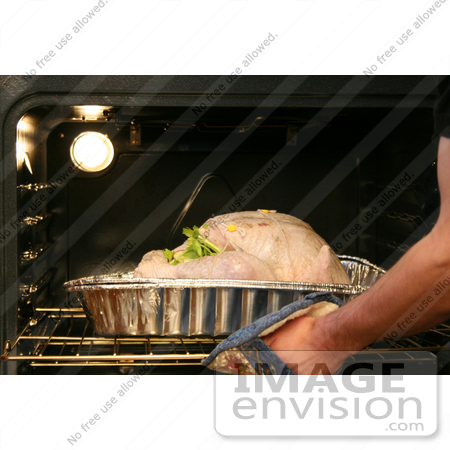 #7723 Picture of Putting a Turkey in the Oven by Jamie Voetsch
