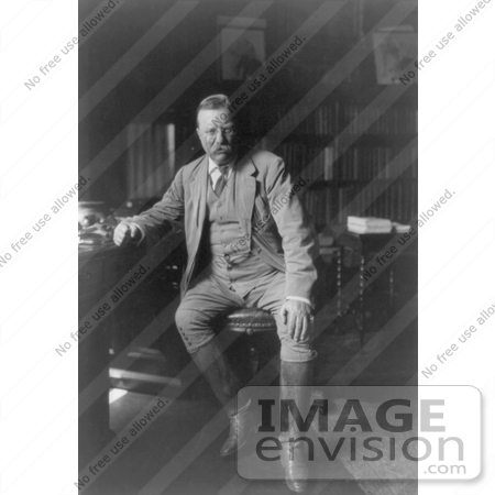 #7898 Picture of President Roosevelt in His Library by JVPD