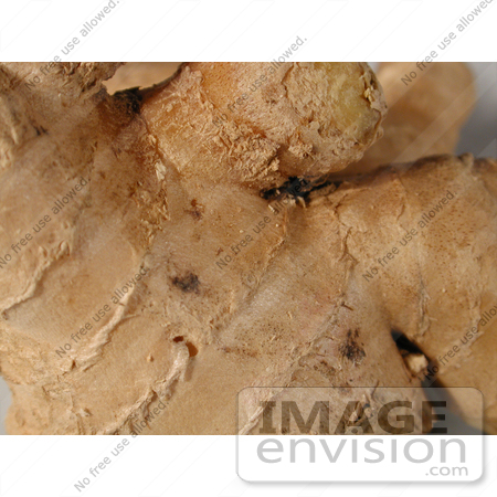 #93 Picture of Ginger Root Spice by Kenny Adams