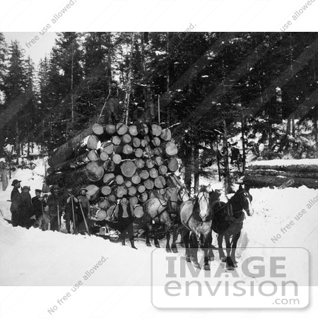 #9532 Picture of Horses Pulling a Sleigh of Logs by JVPD