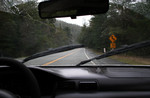 Free Picture of Driving in Rainy Weather