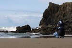 Free Picture of Photographer Photographing the Oregon Coast