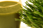 Free Picture of Wheatgrass and Juice