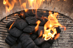 Free Picture of Charcoal Briquettes Combusting Into Flames