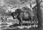 Free Picture of The Buffalo