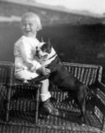 Free Picture of Gerald Ford With His Boston Terrier