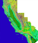 Free Picture of California Mosaic