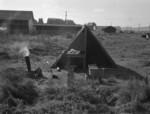 Free Picture of Potato Camp