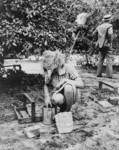 Free Picture of Cherry Pickers