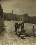 Free Picture of Bethlehem Street Scene With Camel