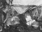Free Picture of Eskimo Hut Interior