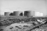Free Picture of Oil Tanks