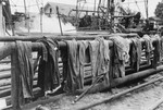 Free Picture of Drying Clothes