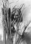 Free Picture of Woman Behind Cattails