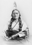 Free Picture of Sitting Bull Holding a Calumet