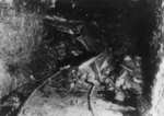 Free Picture of Coal Miner Killed by Rock