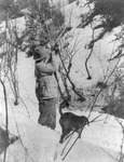Free Picture of Roosevelt Hunting