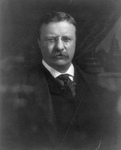 Free Picture of Theodore Roosevelt in 1905