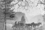 Free Picture of Roosevelt Party at Inspiration Point, Yosemite