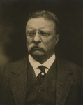 Free Picture of President Roosevelt
