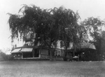 Free Picture of House of Sagamore Hill