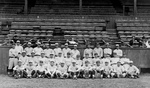 Free Picture of Team Portrait of the New York Yankees