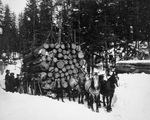 Free Picture of Horses Pulling a Sleigh of Logs