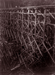 Free Picture of Log Trestle