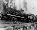 Free Picture of People and Log on a Logging Train