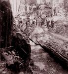 Free Picture of Group of Lumberjacks